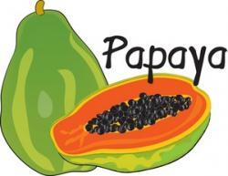 Pawpaw clipart mango seed