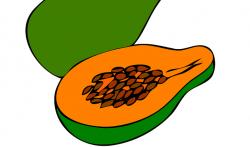 Papaya clipart las