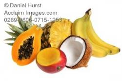Coconut clipart papaya fruit