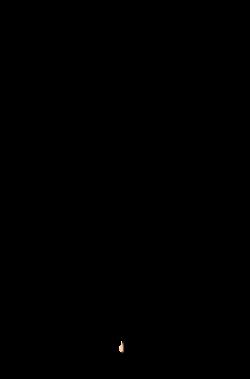Parachute clipart vector