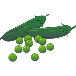 Pea clipart vegitables