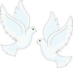 Brds clipart white dove