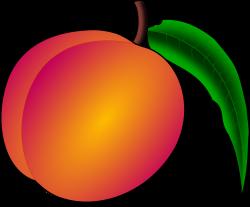 Nectarine clipart peach pie