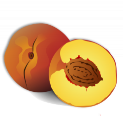 Peach clipart fruit