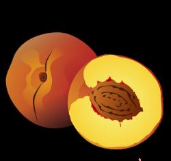Peach clipart fruit
