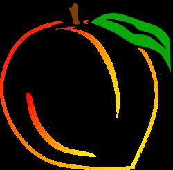 Peach clipart fruit outline