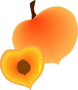 Peach clipart half
