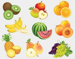 Orange (Fruit) clipart friut