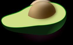 Avocado clipart pit