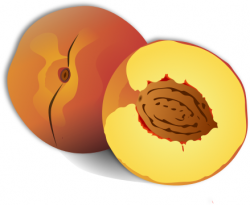 Peach clipart sliced