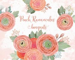 Ranuncula clipart flower burst