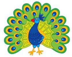 Peacock clipart beak