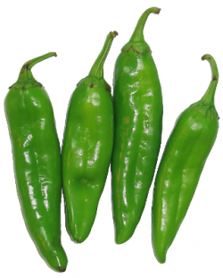Chili clipart green vegetable