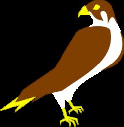 Prairie Falcon clipart falcon football