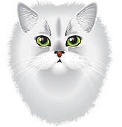 Persian Cat clipart