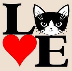 Tuxedo Cat clipart kitty cat