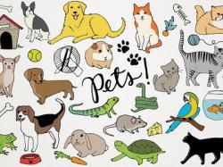 Pets clipart