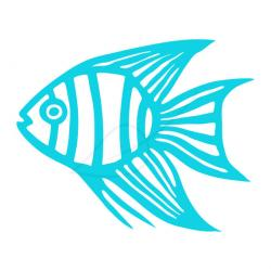 Angelfish clipart blue