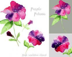 Petunia clipart purple floral