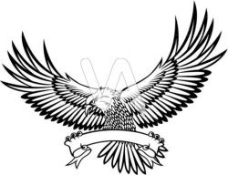 Phoenix clipart hawk wing