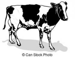 Cow clipart milky white
