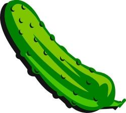 Pickle clipart one