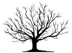Barren clipart bare tree branch