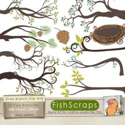 Bird's Nest clipart owl nest