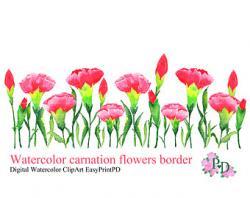 Carnation clipart border