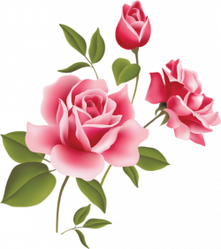 Pink Rose clipart flowery