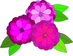 Zinnea clipart 3 flower