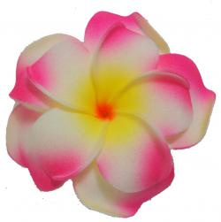 Plumeria clipart single