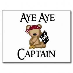 Pirate clipart bear