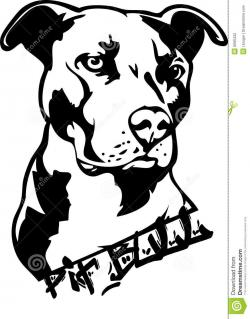 Pitbull clipart pitbull terrier