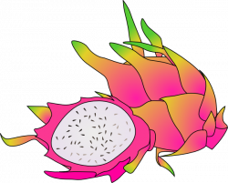 Pitaya clipart cartoon