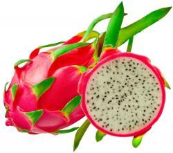 Pitaya clipart health