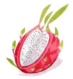 Pitaya clipart single fruit