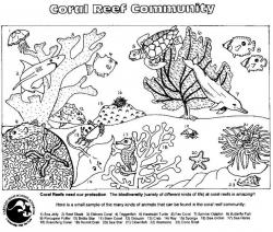Pl clipart community coloring page