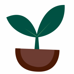 Seeds clipart small plant