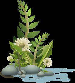Serene clipart pond plant