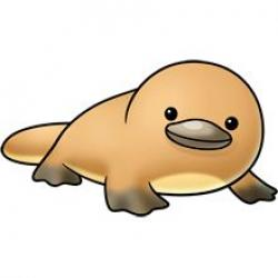 Platypus clipart drawing