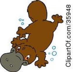 Platypus clipart happy