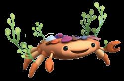 Hermit Crab clipart octonauts