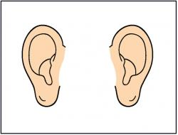 Pointed Ears clipart pair ear