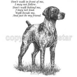 German Shorthaired Pointer clipart transparent