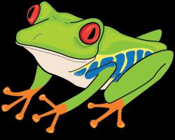 Tadpole clipart amphibian