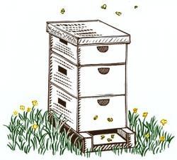 Box clipart beehive