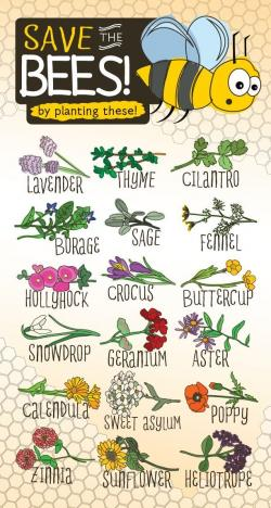 Pollination clipart apiary