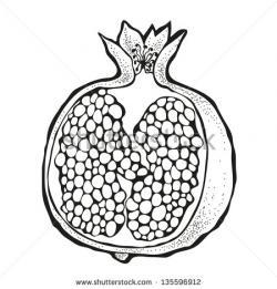 Pomegranate clipart black and white