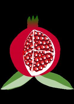 Pomegranate clipart frut